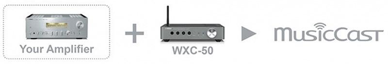 AmpliWXC 50 Musiccast
