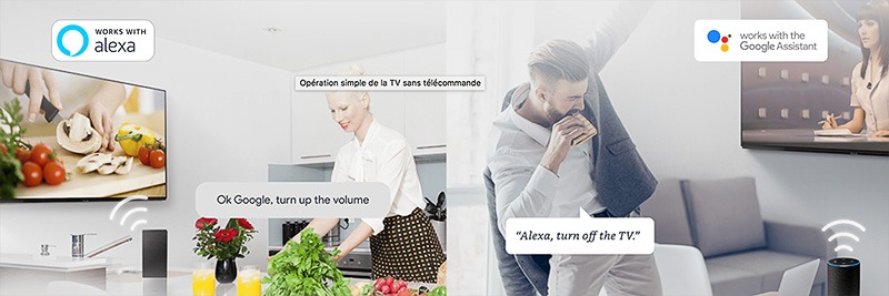 Panasonic Amazon Alexa Assistant Google