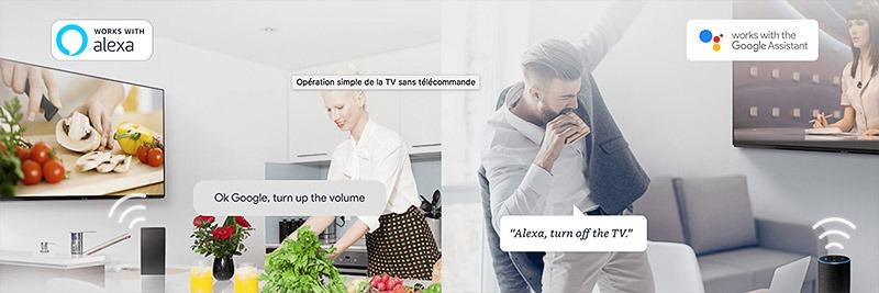 Panasonic TX 55GZ1500 Amazon Alexa ou Assistant Google