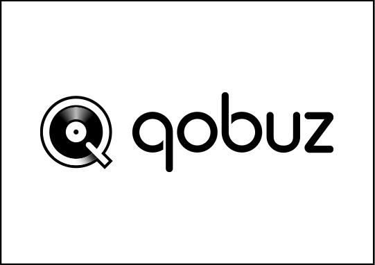 streaming icon qobuz